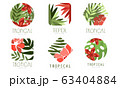 Geometric Tropical Logo Design Collection with Exotic Leaves and Red Flowers Vector Illustration 63404884