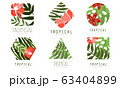 Geometric Tropical Logo Design Collection with Exotic Leaves and Flowers 63404899