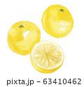 グレープフルーツ 63410462