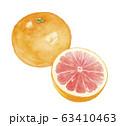 グレープフルーツ 63410463