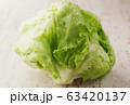 レタス 63420137