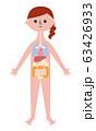 人体解剖図 63426933