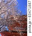sakura and pagoda temple, Japan 63471887
