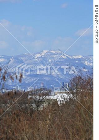 手稲山(野幌森林公園からの眺め) 63493038
