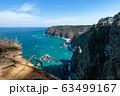 【岩手県鵜の巣断崖】厳寒期の鵜の巣断崖 63499167