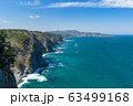 【岩手県田野畑村】鵜の巣断崖は足が竦むような断崖絶壁 63499168