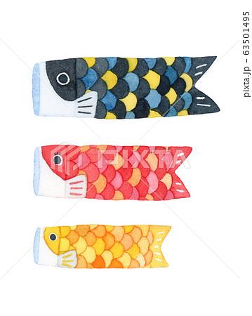 手描き水彩|子供の日 鯉のぼり(鯉のみ)イラスト 63501495