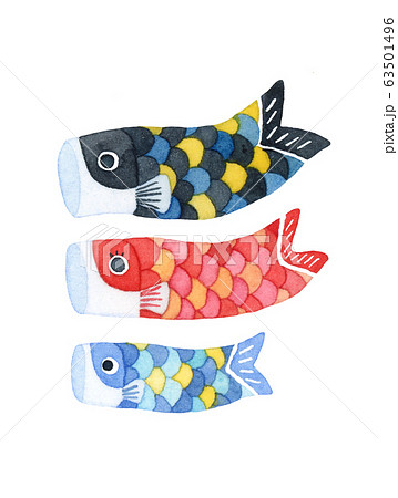 手描き水彩|子供の日 鯉のぼり(鯉のみ)イラスト 63501496