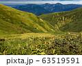巻機山・割引岳の稜線から見る越後三山 63519591