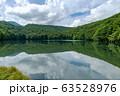【青森県十和田市】夏の蔦沼は癒しの秘境 63528976