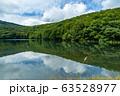 【青森県十和田市】夏の蔦沼は癒しの秘境 63528977