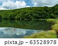 【青森県十和田市】夏の蔦沼は癒しの秘境 63528978