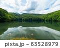 【青森県十和田市】夏の蔦沼は癒しの秘境 63528979