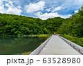 【青森県十和田市】夏の蔦沼は癒しの秘境 63528980