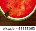 夏:虫 西瓜 スイカ割り 自然 真夏 夏休み 思い出 果物 水彩 手描き フルーツ 種 果汁 63553063