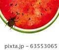 夏:虫 西瓜 スイカ割り 自然 真夏 夏休み 思い出 果物 水彩 手描き フルーツ 種 果汁 63553065