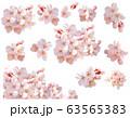 [キリヌキパス付]桜 63565383