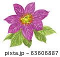 clematice20324pix7 63606887