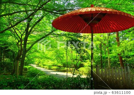 二尊院(京都市右京区嵯峨)新緑の庭園 63611100