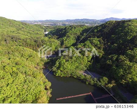円良田湖(つぶらたこ)〜ドローンで空撮(埼玉県寄居町・美里町) 63615346