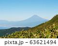 遠くに見える富士山 63621494