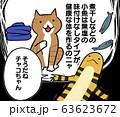 健康志向のネコさんとゴールデンテグーさん(ペット、元気) 63623672