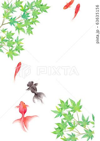 金魚と新緑のモミジで構成した夏のイメージ背景、水彩イラスト 63635156