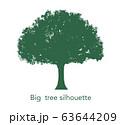 大木のシルエット 63644209
