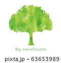 水彩の大木シルエット 63653989