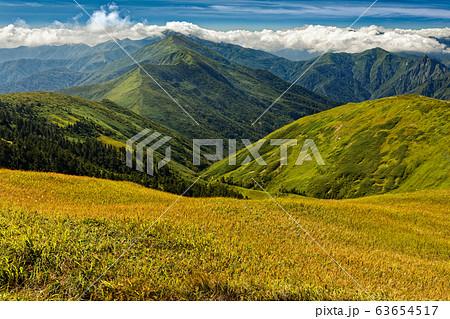 巻機山の草紅葉と雲掛る上越国境稜線 63654517