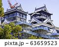 今こそ見に行く価値がある熊本城 (2020年3月21日撮影) 63659523