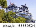 今こそ見に行く価値がある熊本城 (2020年3月21日撮影) 63659524