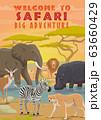 African safari animals. Hunting sport tours 63660429