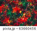 トロピカルなイメージの壁紙 63660456