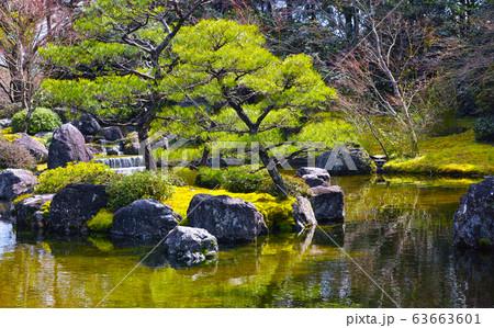 太陽の光を受けて輝く日本庭園の景観 63663601
