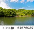 石垣の浦内川 63676085