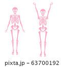 骨格のイラスト ピンク単色 63700192