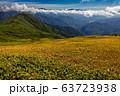 巻機山・牛ヶ岳稜線の草紅葉と日光・尾瀬の山並み 63723938