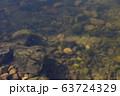 水面を飛ぶ蚊柱 63724329