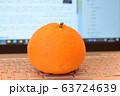パソコン前の丸い柑橘 63724639