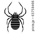 蜘蛛のベクターイラスト 63758466