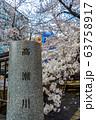 京都・高瀬川の桜 63758917