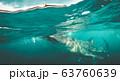 Whale shark watching off the scenic coast of Oslob, Cebu, Philippines 63760639