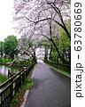間々田八幡宮の桜 63780669