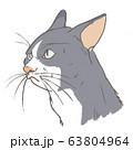 ハチワレ猫 63804964