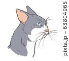 ブチ猫 63804965