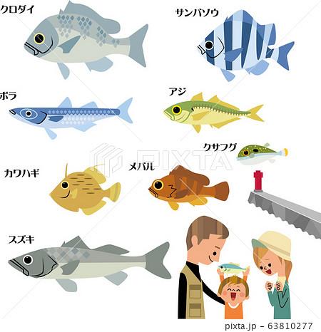 海で釣れる、身近な魚 63810277