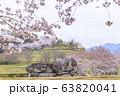 石舞台古墳 春 63820041