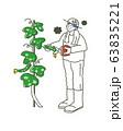病気になったきゅうりを収穫する男の子 イラスト 63835221