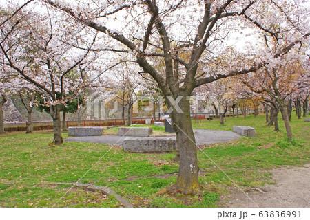大阪城・おもいでの森 63836991